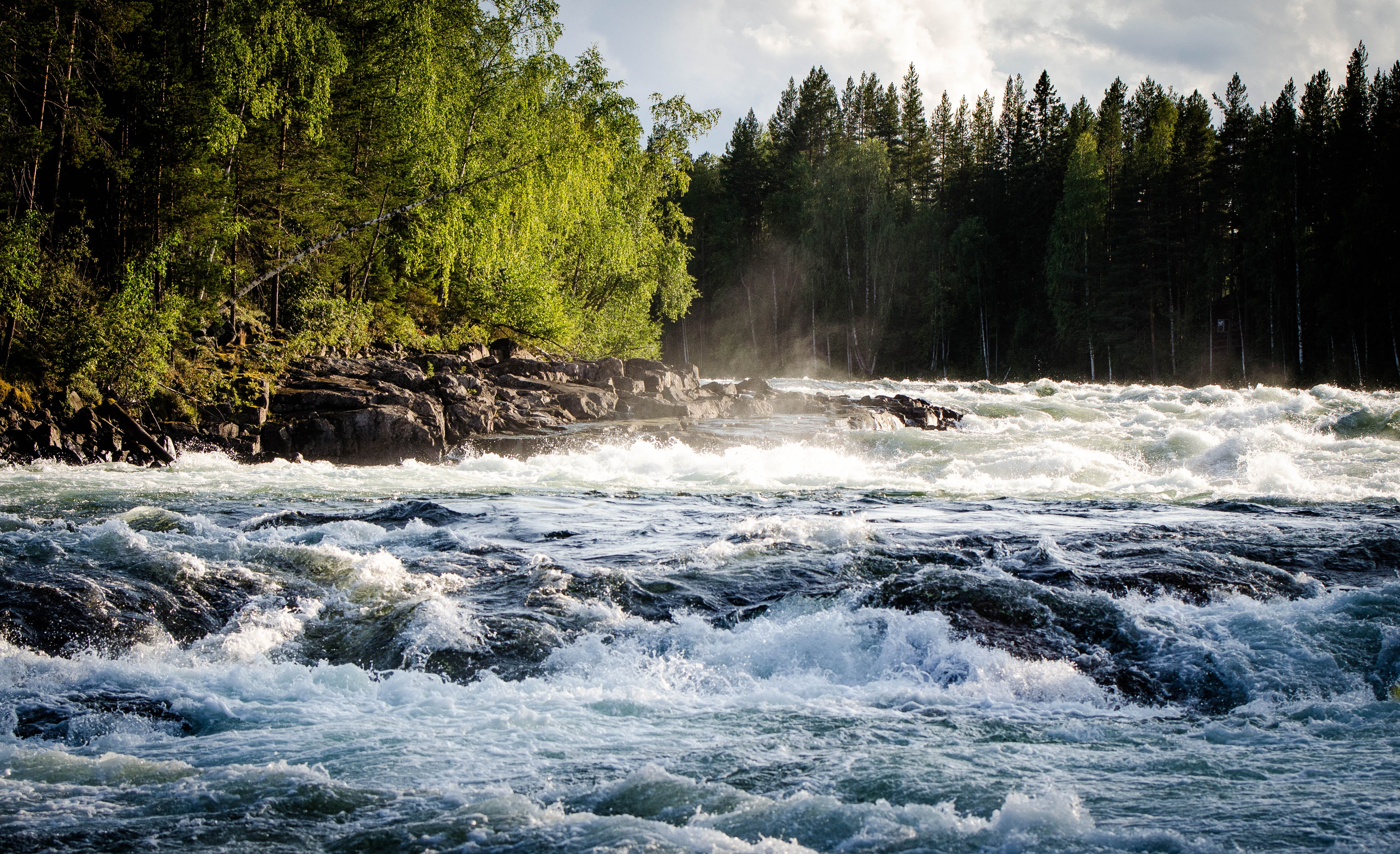 The biggest and strongest rapids in the north region (Storforsen, Swed